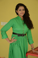 Geethanjali in Green Dress at Mixture Potlam Movie Pressmeet March 2017 032.JPG