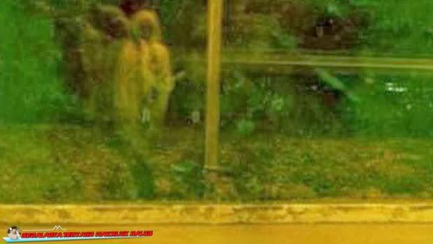 Hantu Terfoto di Pinggir Jalan