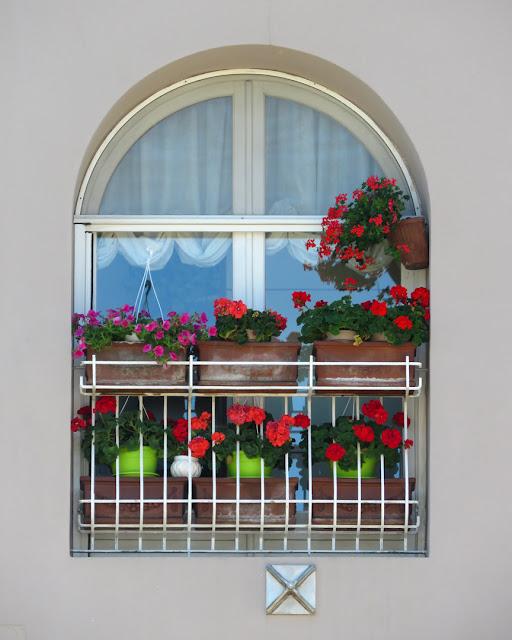 Probably the nicest window in town, Piazza della Vittoria, Livorno