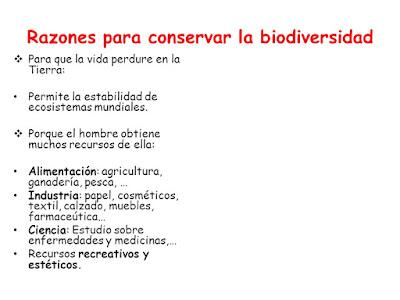 ¿Por qué conservar la Biodiversidad?