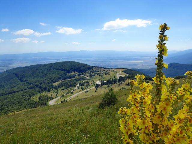 Stara Płanina ciągnie się przez całą Bułgarię