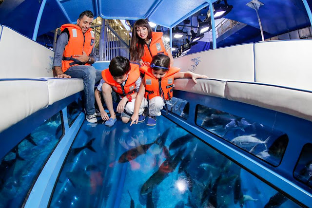 Dubai Aquarium and Underwater Zoo,things to do in dubai,dubai attractions map video coupons tickets 2016 packages and prices for families in summer,dubai destinations to visit and landmarks map airport,dubai airport destinations map,dubai honeymoon destinations,cobone dubai destinations,dubai holiday destinations,things to do in dubai airport for a day at night with kids 2016 layover in summer during ramadan with family