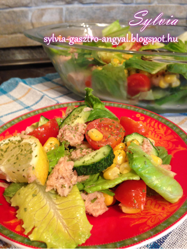 Sylvia Gasztro Angyal: Tonhalas római saláta