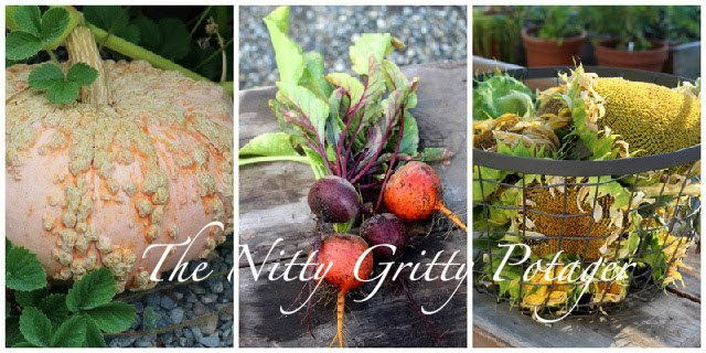 The Nitty Gritty Potager