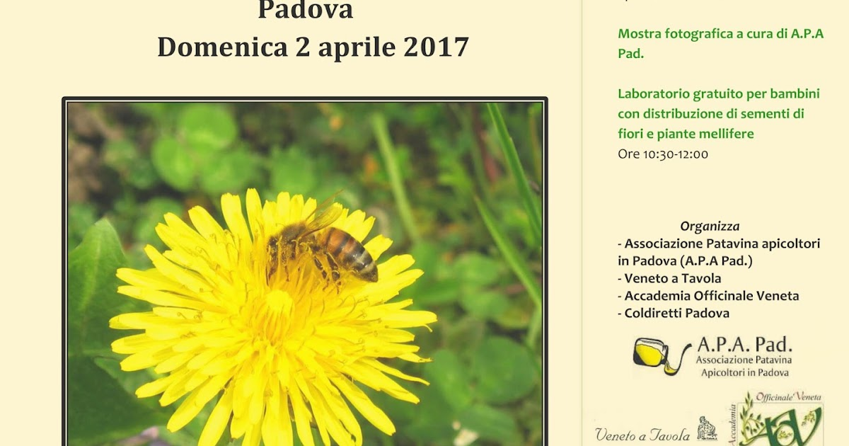 Api prati padova domenica 2 aprile 2017 for Eventi milano aprile 2017
