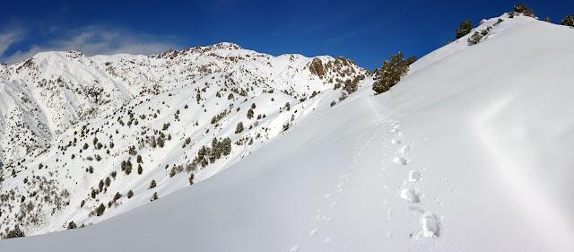 DSC00349 Panorama