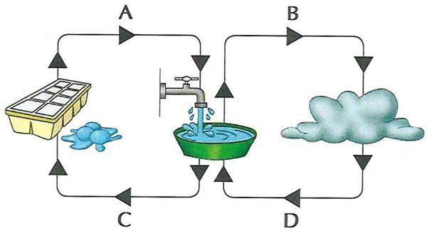 nas-aulas-de-ciencias-voce-aprendeu-que-a-materia-e-composta-de-minusculas-unidades-os-atomos