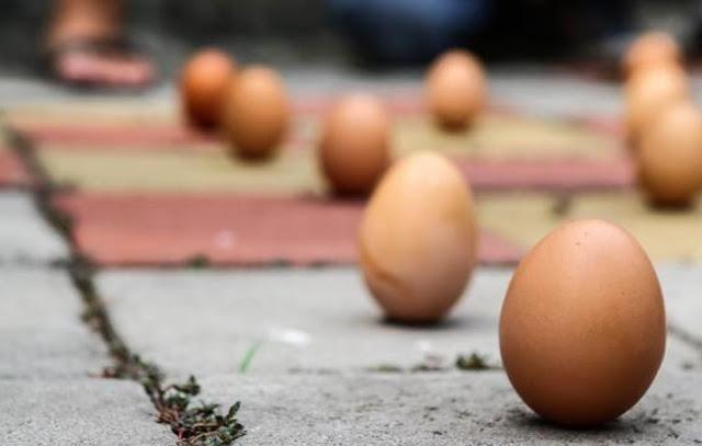 Kubur Telur Mentah Dalam Pot, Lihat Apa yang Akan Terjadi