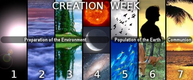 Dig Deeper Sanctuary Series 7 Days Of Creation