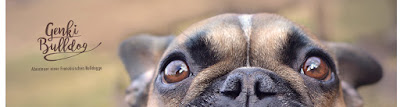 hundeblog genki bulldog rezept bananen nuss muffins f r hunde. Black Bedroom Furniture Sets. Home Design Ideas