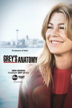 Grey's Anatomy 15ª Temporada Torrent – WEB-DL 720p/1080p Dual Áudio