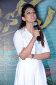 Sarrainodu Success Meet-thumbnail-5