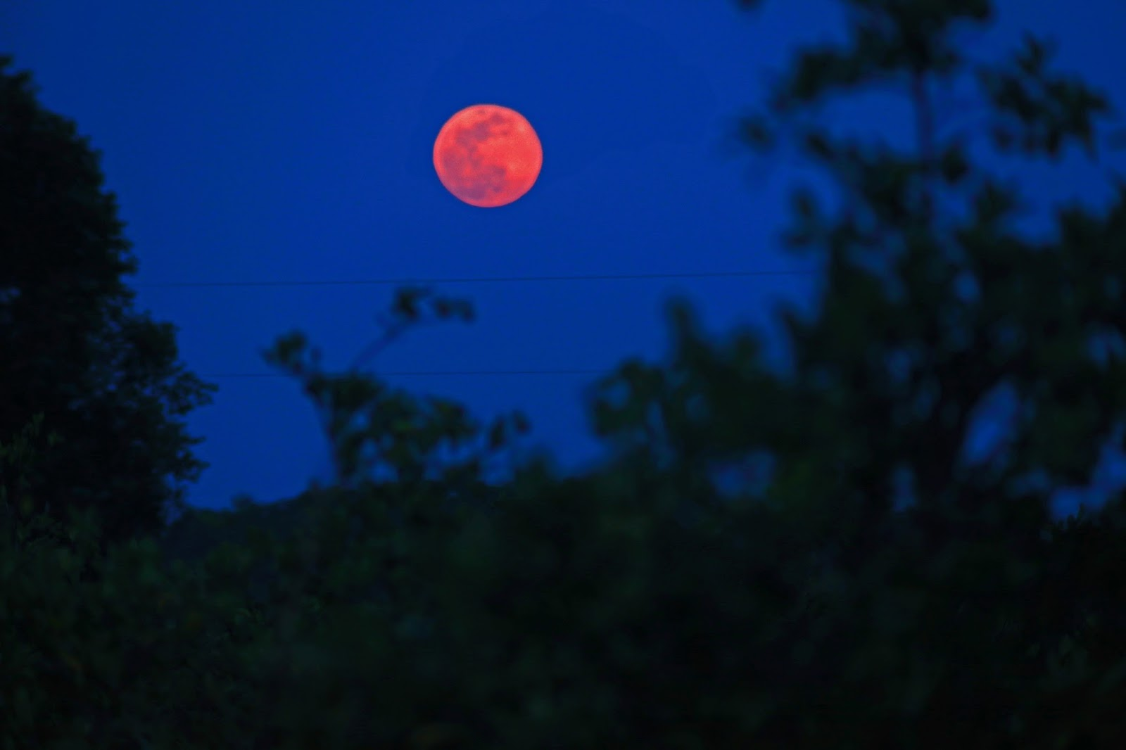 esplaobs THE FLOWER MOON AS IT ROSE Taken by Victor C Rogus FRAS on May 10