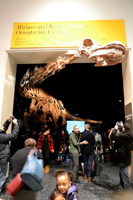 Титанозавр. Американський музей природознавства, Нью-Йорк(American Museum of Natural History, NYC)