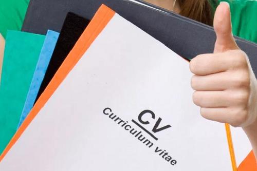 Contoh Daftar Riwayat Hidup / Curriculum Vitae (CV) Lamaran Kerja