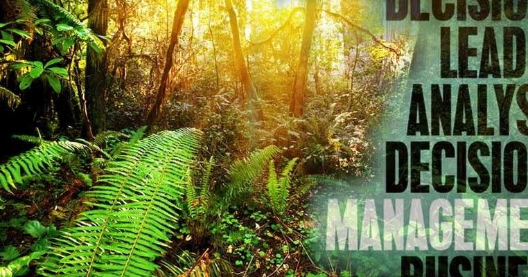 Go Blog 225 Daftar Judul Skripsi Pengelolaan Hutan Terbaru