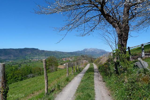 Sierra del Sueve - Piloña - Asturias