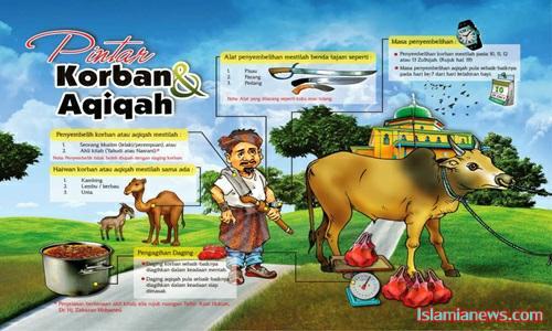 Pengertian Dalil Dasar Hukum Qurban Dalam Islam Tapi Belum Aqiqah