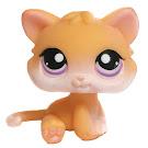 Littlest Pet Shop Pet Pairs Kitten (#114) Pet