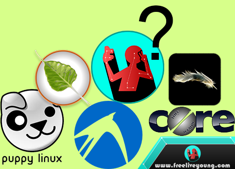 5 Most Lightweight OS for low spec PC