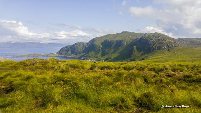 Zona de Nidificación de la Isla de Runde, Noruega por El Guisante Verde Project