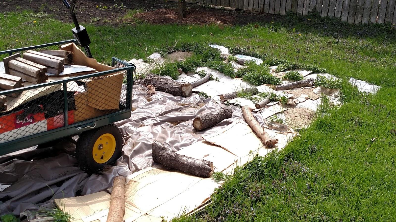 Backyard Patch Herbal Blog New Garden Update Starting From Scratch