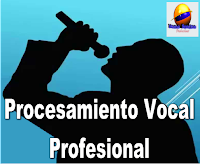 Procesamiento Vocal