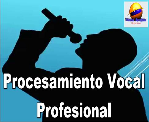 Procesamiento Vocal