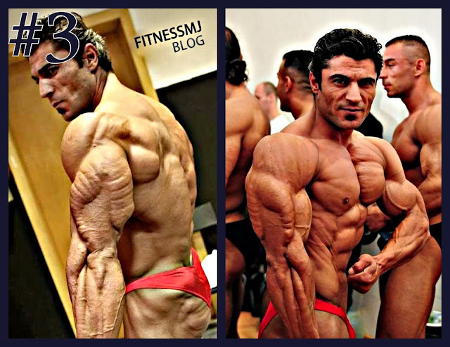 Mahmut Irmak , ifbb pro , best tricep muscles