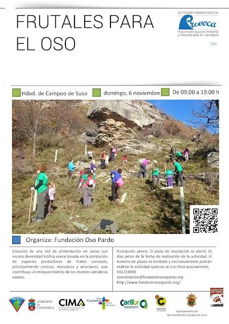 Voluntariado: Plantación de frutales en Campoo