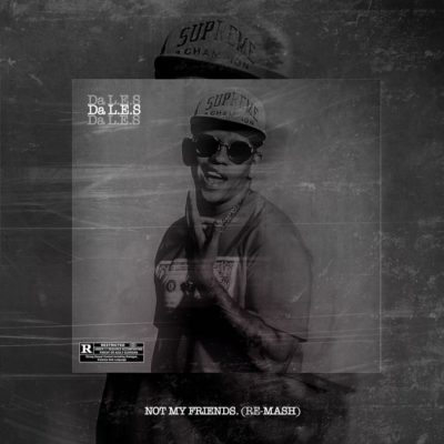 MashBeatz ft. Da L.E.S & A-Reece – Not My Friends (Re-Mash)