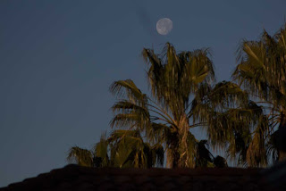 Morning moon over Palmia Observatory