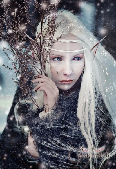 WINTER ELF