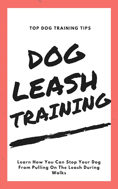 Dog Leash Training PDF Ebook Free Download