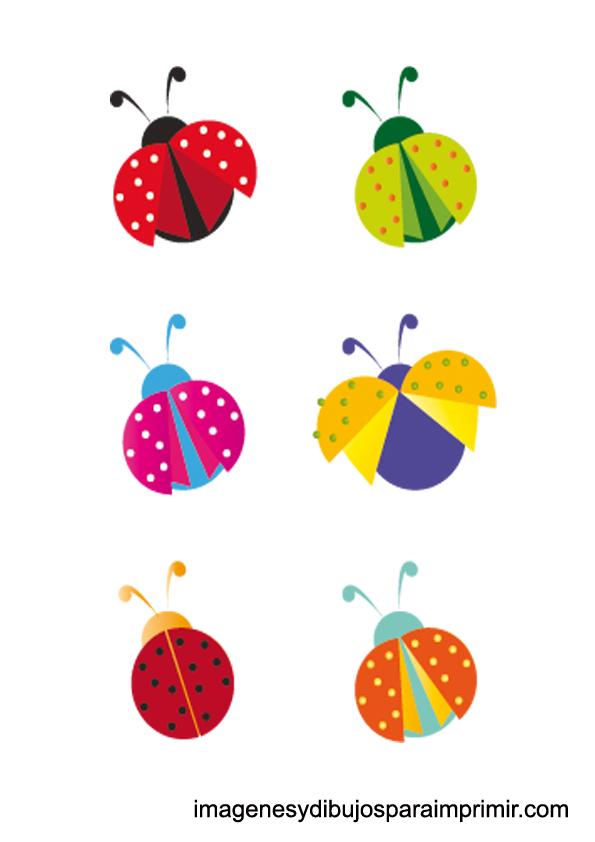 mariquitas de colores para imprimir | Imagenes y dibujos para imprimir