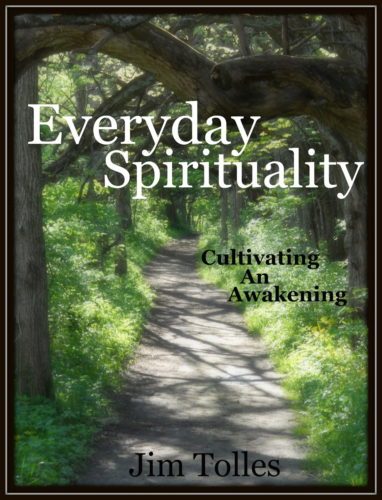 Spirituality ebook my ebook is called everyday spirituality cultivating an awakening i believe that everything we do in this world is part of our service to spirit fandeluxe PDF