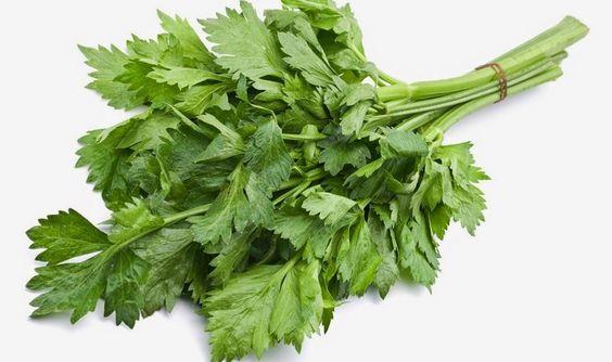 Obat Herbal Rematik yang Bisa Ditemukan di Sekitar Kita