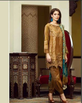 classy-and-stylish-shahmina-imperial-winter-silk-dresses-collection-2017-6