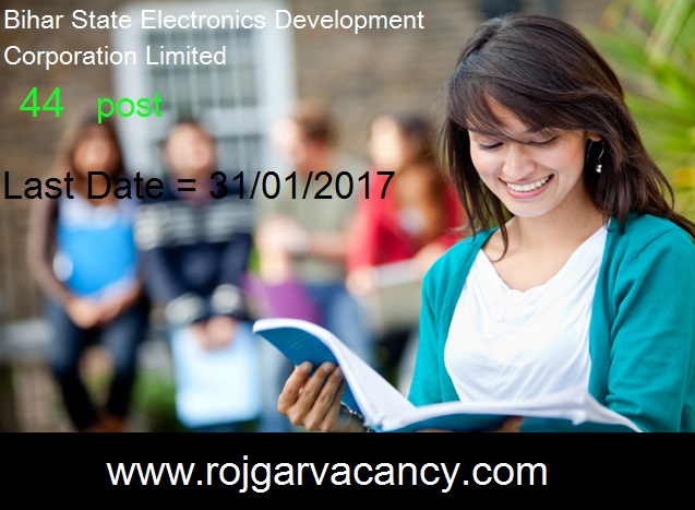 44-assistant-dats-entry-operator-Bihar-State-Electronics-Development-Corporation-LTD-In-this-eGovernance-era-the-government-of-Bihar-strongly-Information-Technology