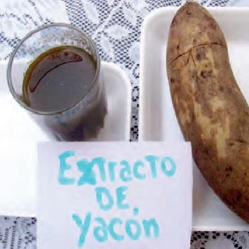 Extracto de Yacón