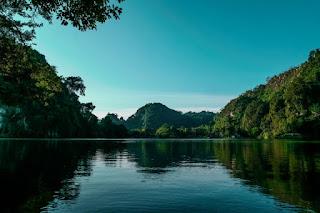 Lac entouré de forêts