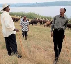 rencontre joseph kabila paul kagame