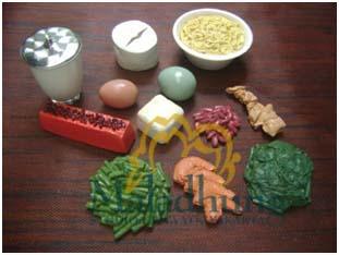 food model gizi seimbang