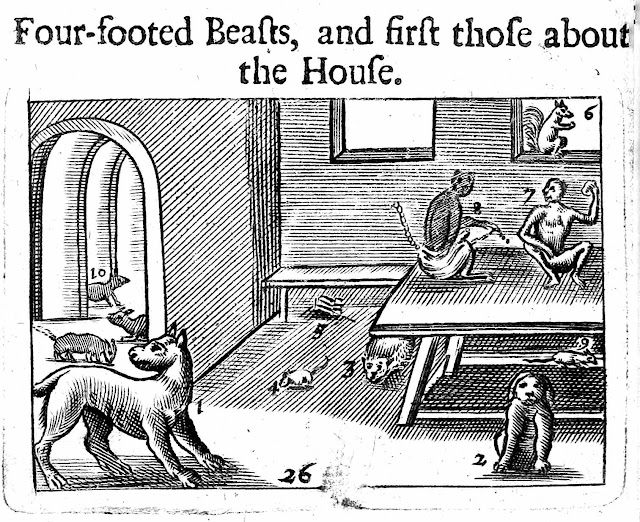 1600s pets and pests