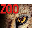 Review: Zoo for Frights and Thrills