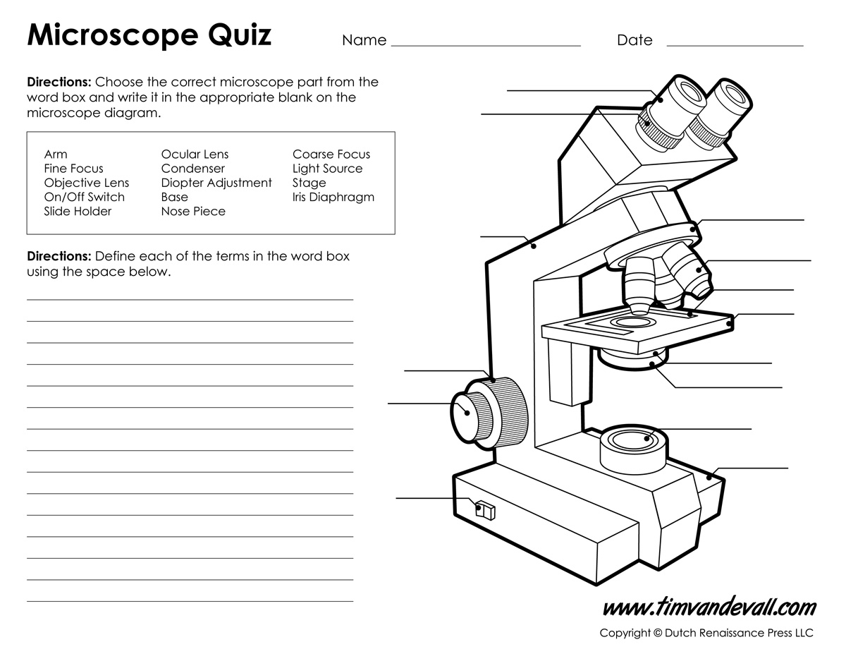 Monday september 25 parts of a compound light microscope parts of a microscope ccuart Gallery