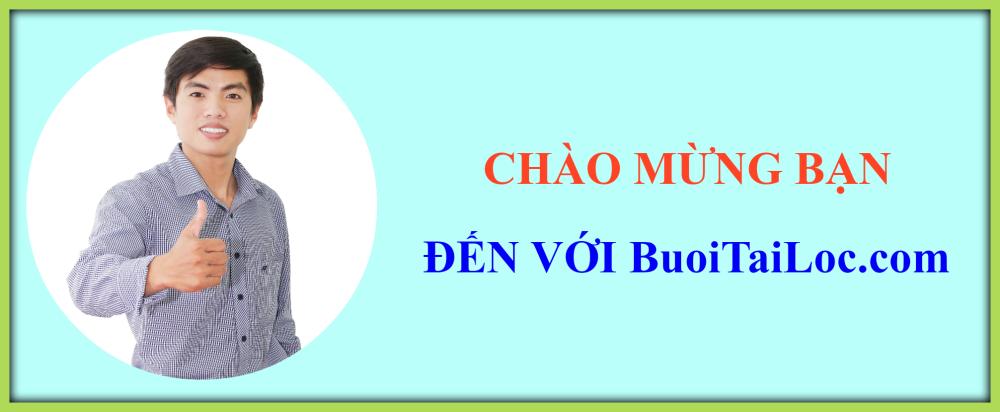 gioi-thieu-BUOI-HO-LO-tai-loc-qua-tang-TET-doc-dao