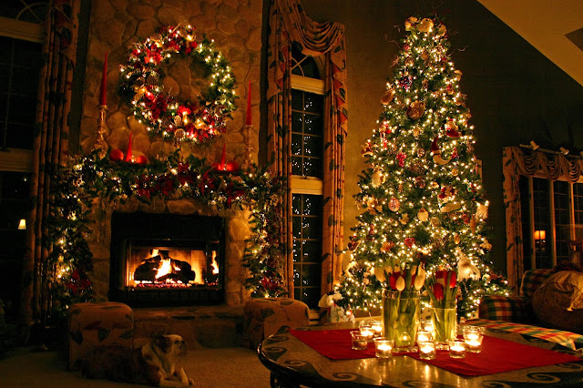 beautiful christmas tree photo