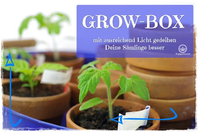 Gartenblog Topfgartenwelt Aussaat Anzucht Grow-Box: bessere Lichtverhältnisse für Keimlinge, Sämlinge und Jungpflanzen