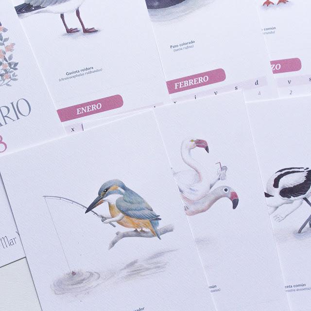 jaros, aves acuáticas de la Albufera, Albufera de Valencia, martín pescador, avoceta, gaviota reidora, flamenco